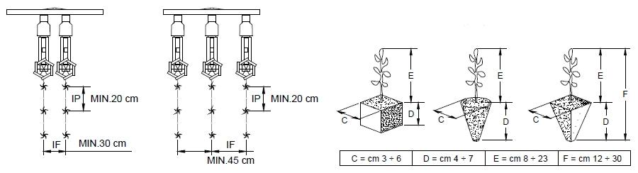 схема высадки рассады